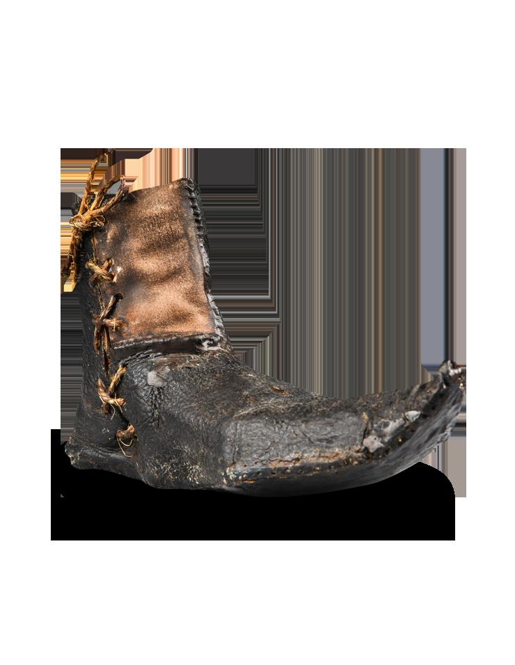 AAO Shoe