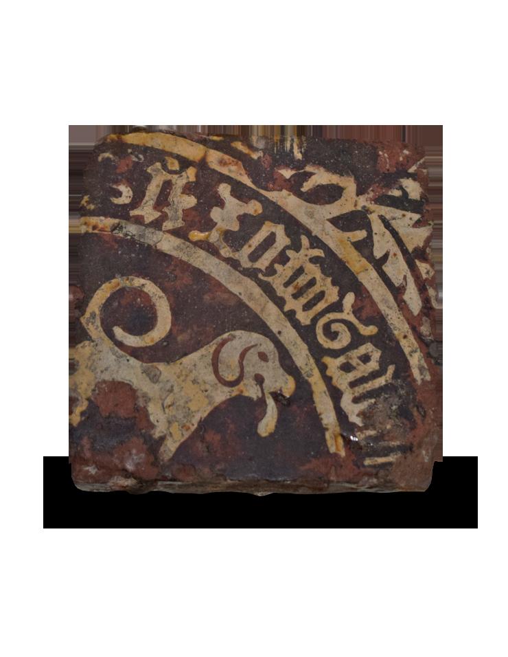 AAO manuscript dogtile
